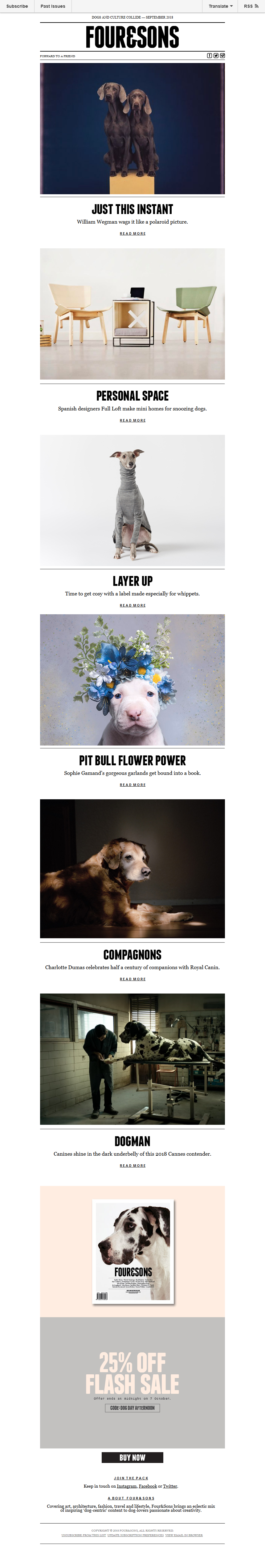 Monthly bites: Polaroids, adorned pit bulls, cosy coats for whippets, and more.